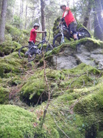 Free Ride Mountain Biking